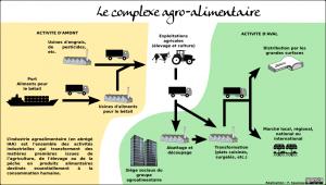 le système agro-alimentaire